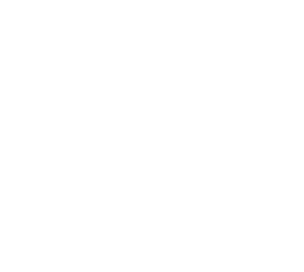 BEFW - Brasil Eco Fashion Week
